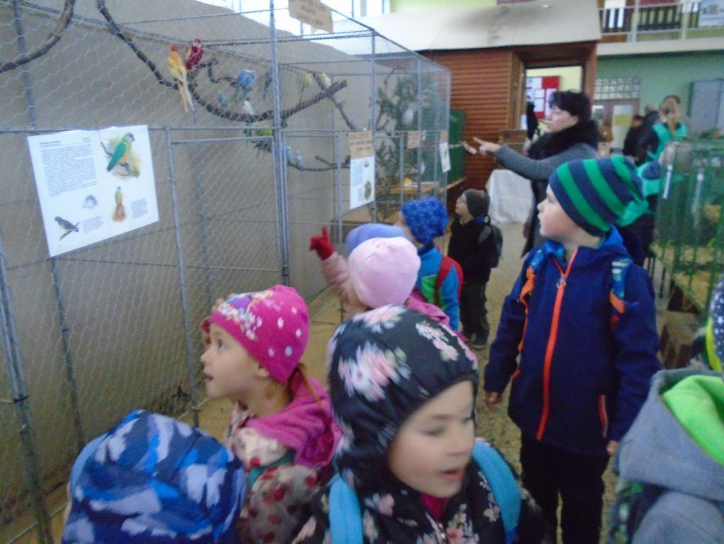 Slavkovská výstava drobného zvířectva